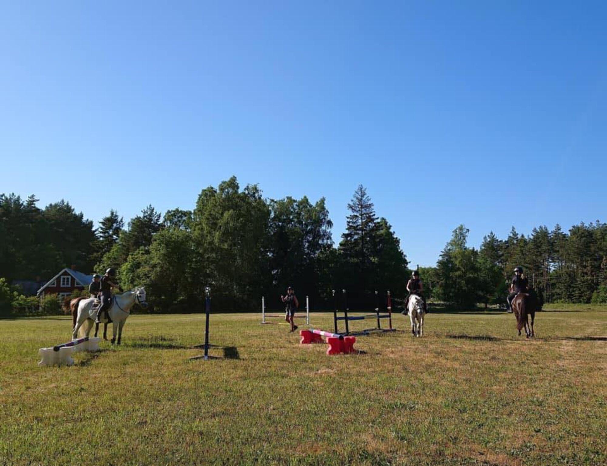 Equus Cabella